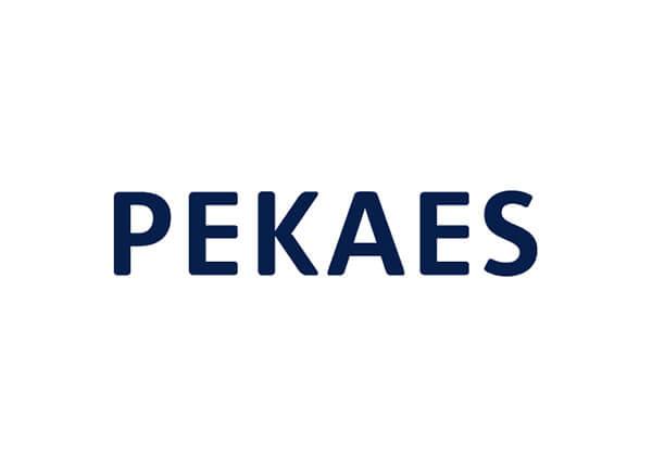 Usługi dodatkowe PEKAES