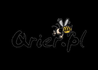 Logo brokera kurierskiego qrier.pl